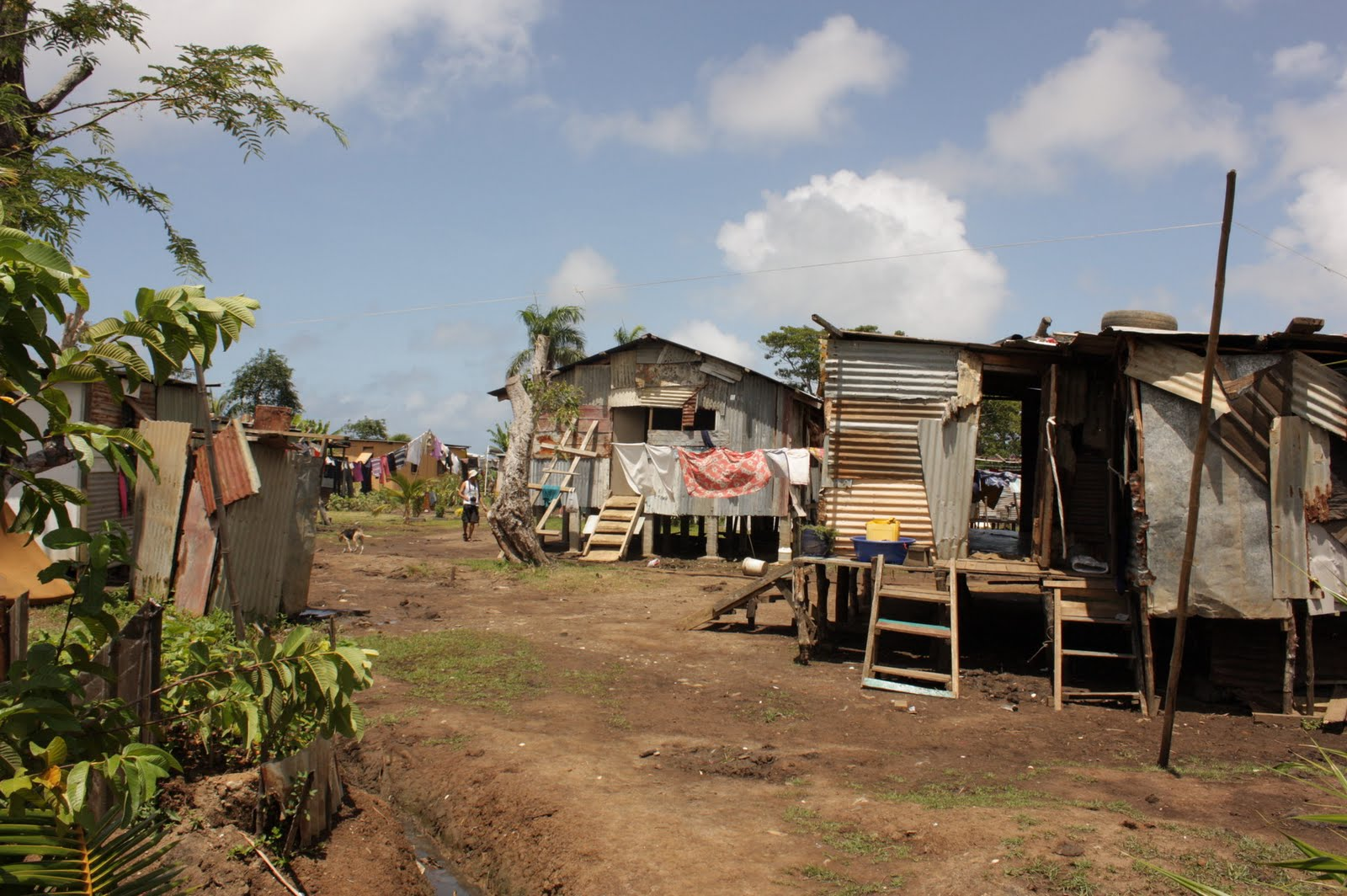 Savusavu Alice Tamani Fiji